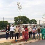 TE Connectivity planta 50 árvores em Bragança Paulista em comemoração aos…